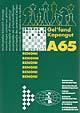 Informator Monografie A65