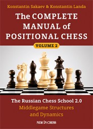 Sakaev-Landa, The Complete Manual of Positional Chess Vol. 2